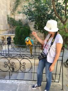 Malta-excursii opționale
