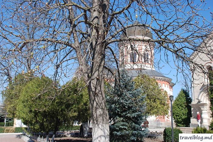 manastirea-noul-neamt-travelblog (7)