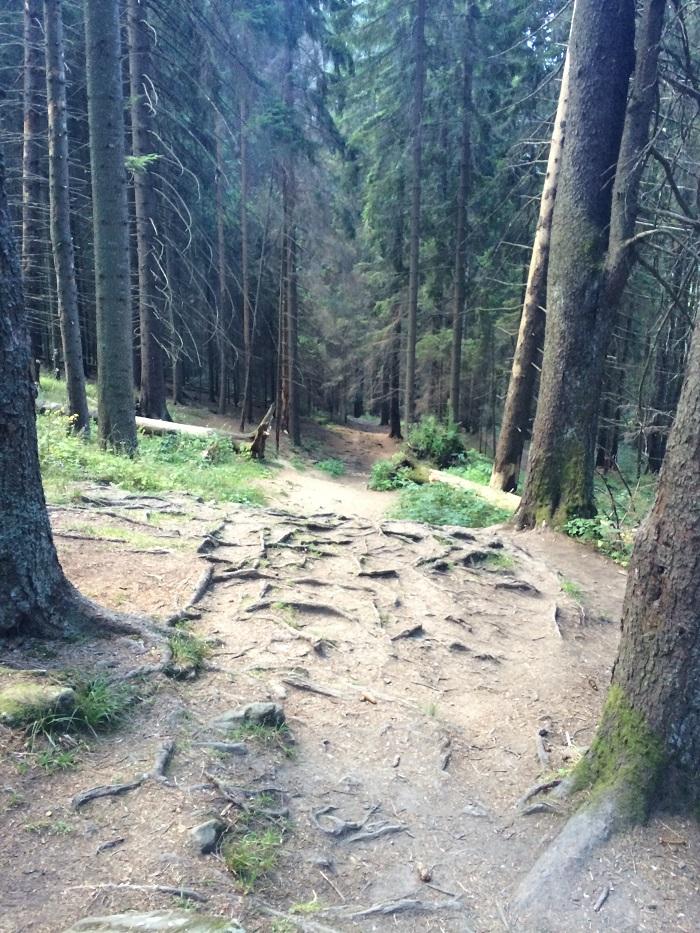 #prineamt-travelblogmd (2)