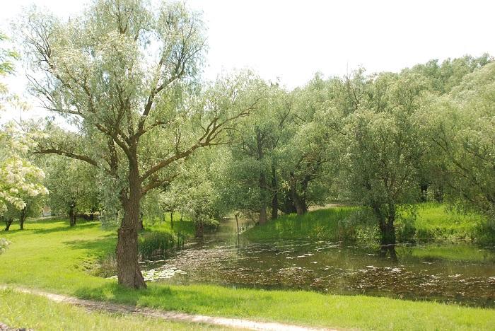 travelblog-moldova-beleu (6)