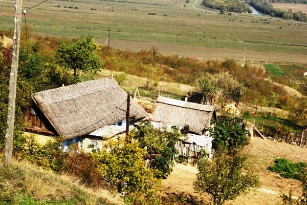 satul purcari