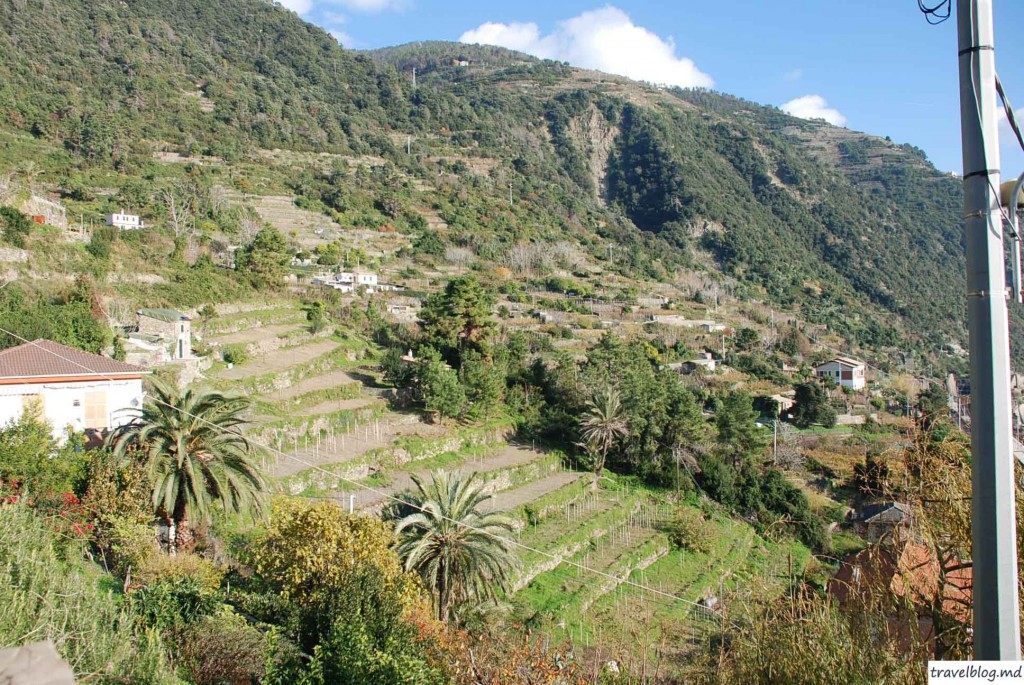 travelblog.md Corniglia (6)