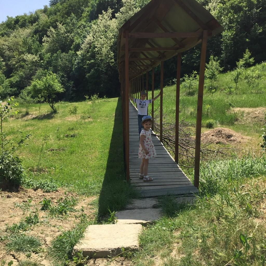 travelblog (13)