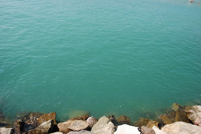 marina beach (14)
