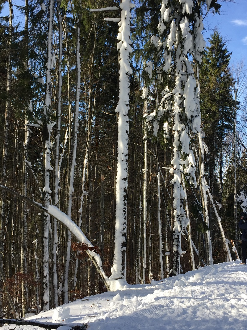 travelblogmd-bukovel (19)