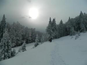 Cît costă o vacanță alternativă la munte?
