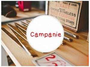 Campanie! În atenţia managerilor agenţiilor de turism, companii avia, hoteluri şi pensiuni