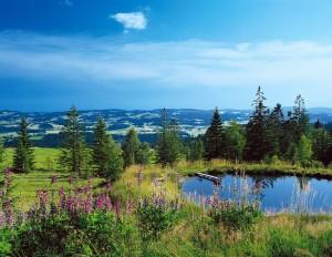 Natura – principala temă de comunicare a Organizației Germane pentru Turism, în anul 2016