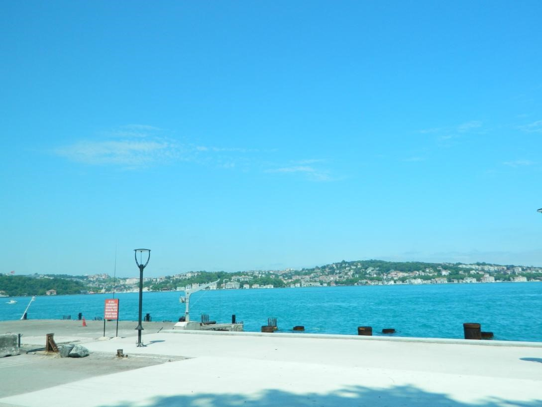 Istanbul Janesse Solery 2