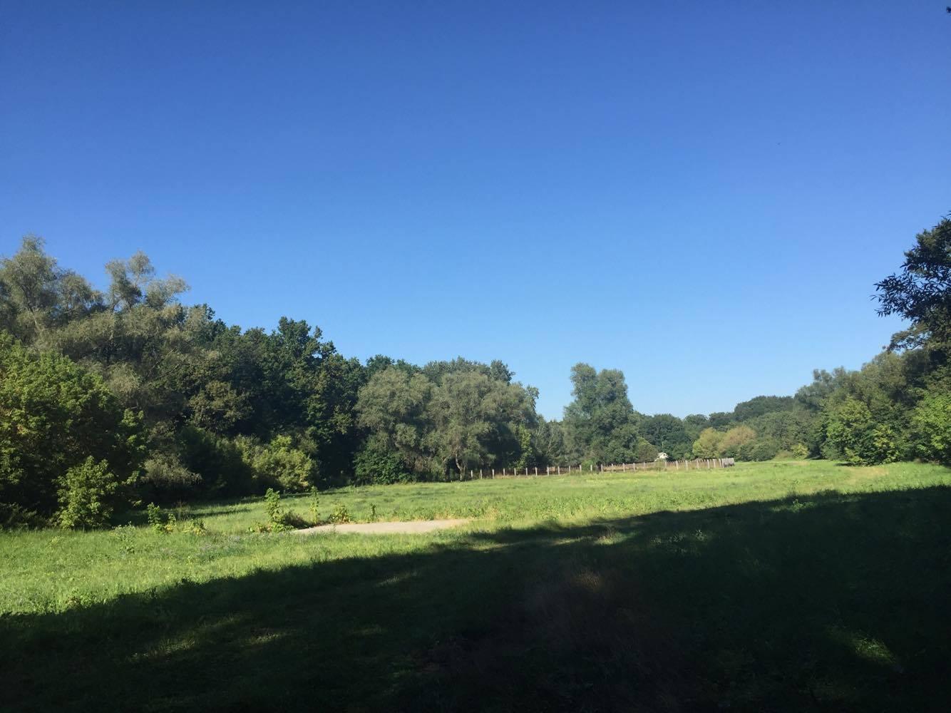 padurea domneasca-travel blog-viorica ataman (13)