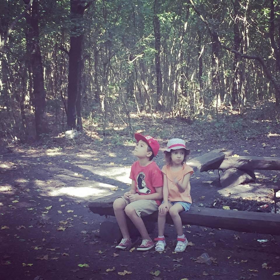padurea domneasca-travel blog-viorica ataman (15)