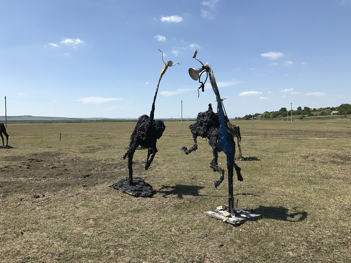 Cuhnesti Art Festival (3)