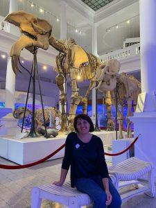 """Duceţi copiii la Muzeul Național de Istorie Naturală """"Grigore Antipa"""", merită drumul"""