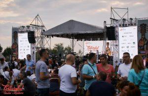 44.000 de pahare de vin consumate la a doua ediție a Festivalului Vinului Moldovei, Snagov